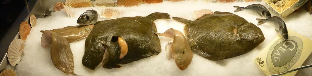 Täglich frischer Fisch in der großen Kühltheke
